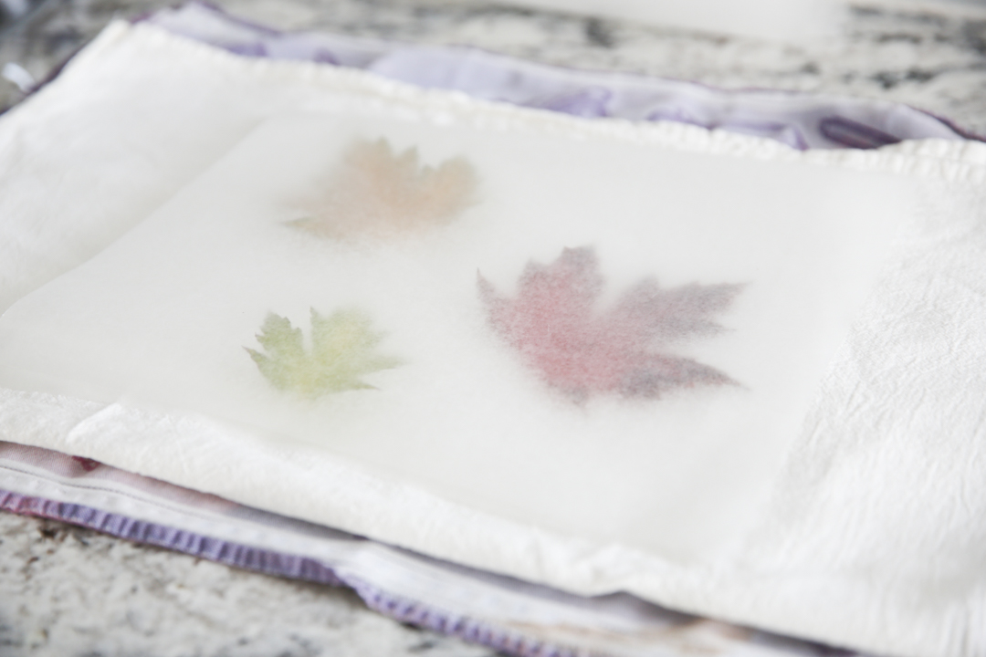fall leaves on wax
