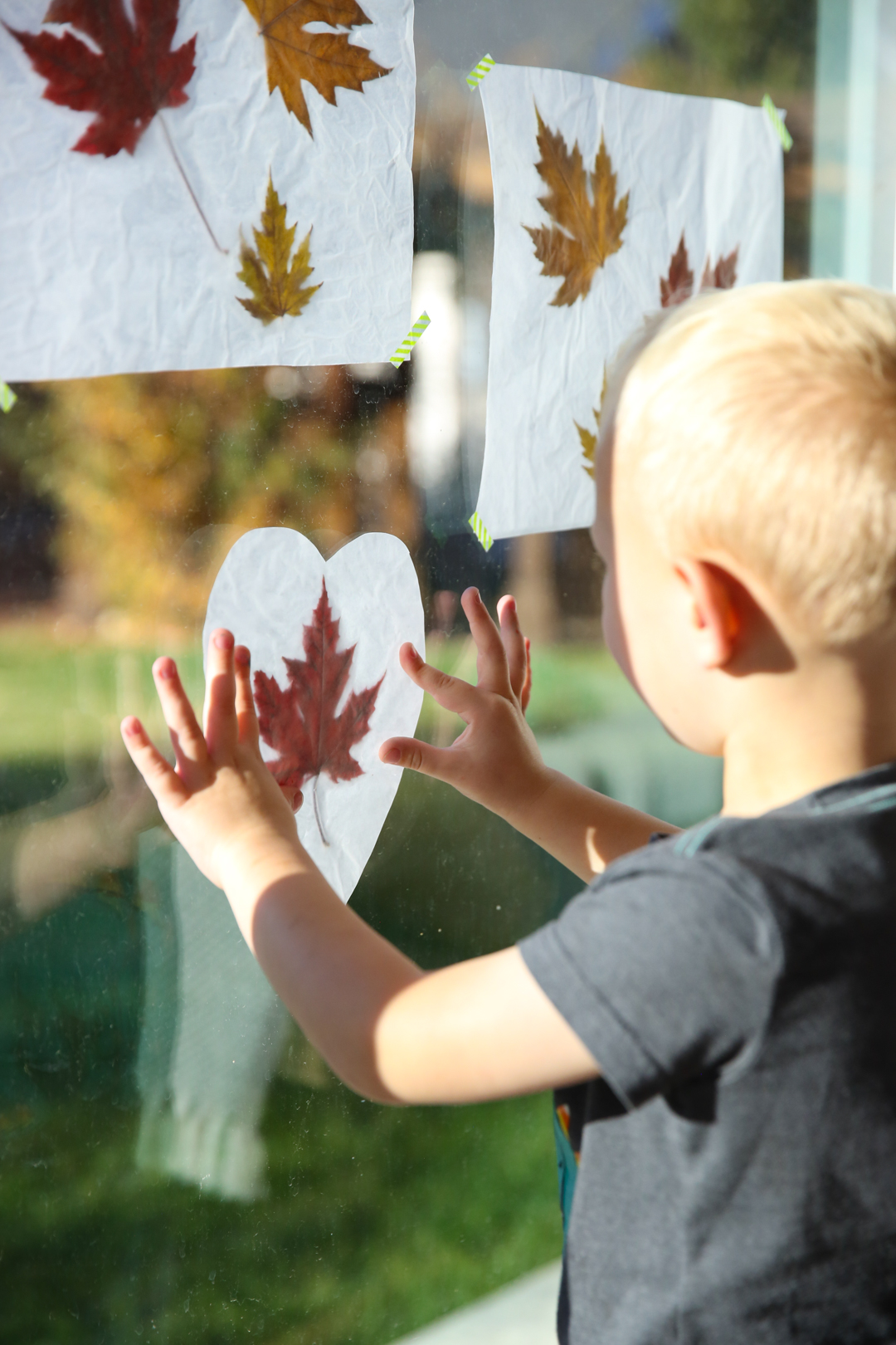 Fall leaves luminaries