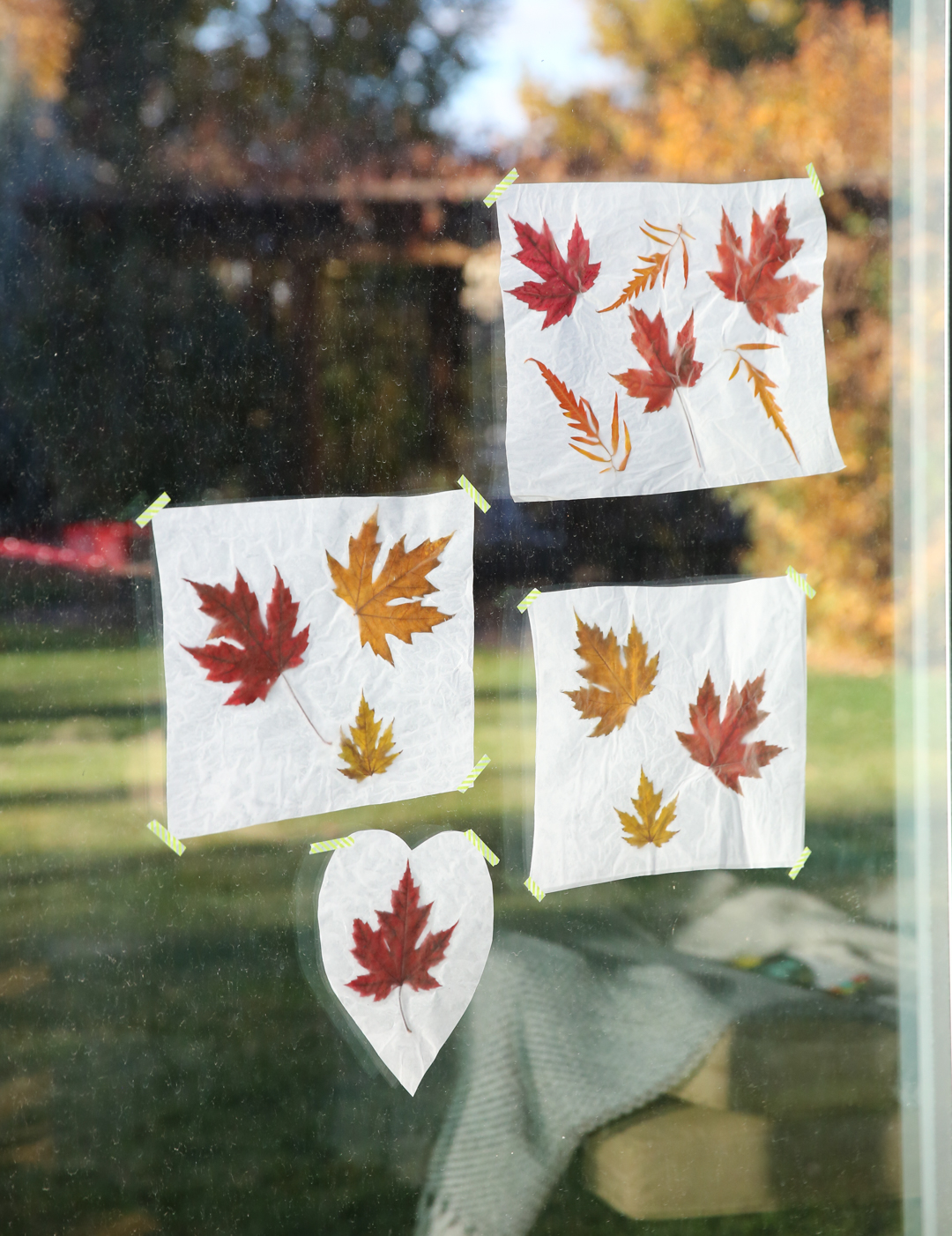 fall leaves on wax paper craft